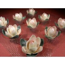 marcipan-magnolia