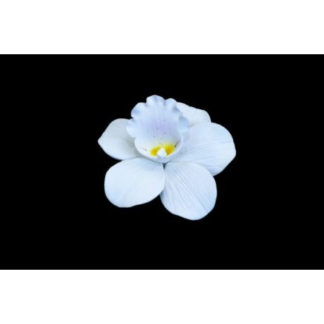 cukorvirag-orchidea