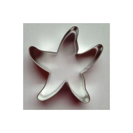 patrik-tengeri-csillag-sutemeny-kiszuro