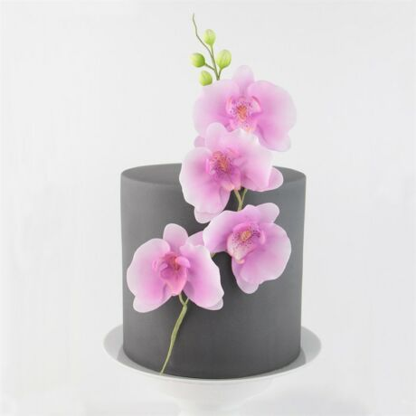 fondant-orchidea-kiszuro