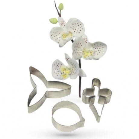 orchidea-kiszuro